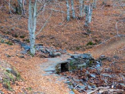 Hayedo Tejera Negra; nieve y montañas cantabricas campamento el pielago cerezos valle del jerte la